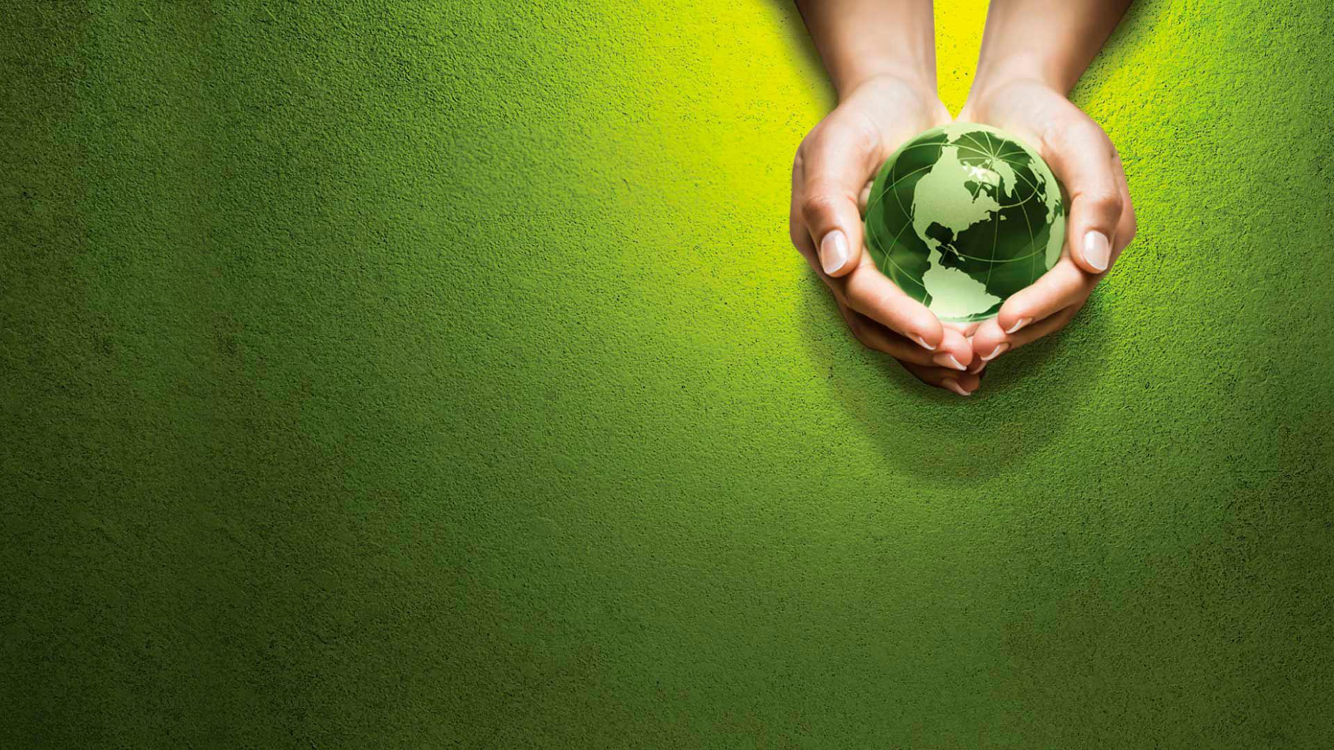 principais-leis-ambientais-brasileiras